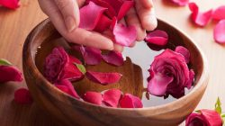 Bật mí 3 cách làm đẹp da bằng hoa hồng đơn giản