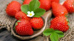 5 loại trái cây tốt, người bị suy thận nên ăn mỗi ngày